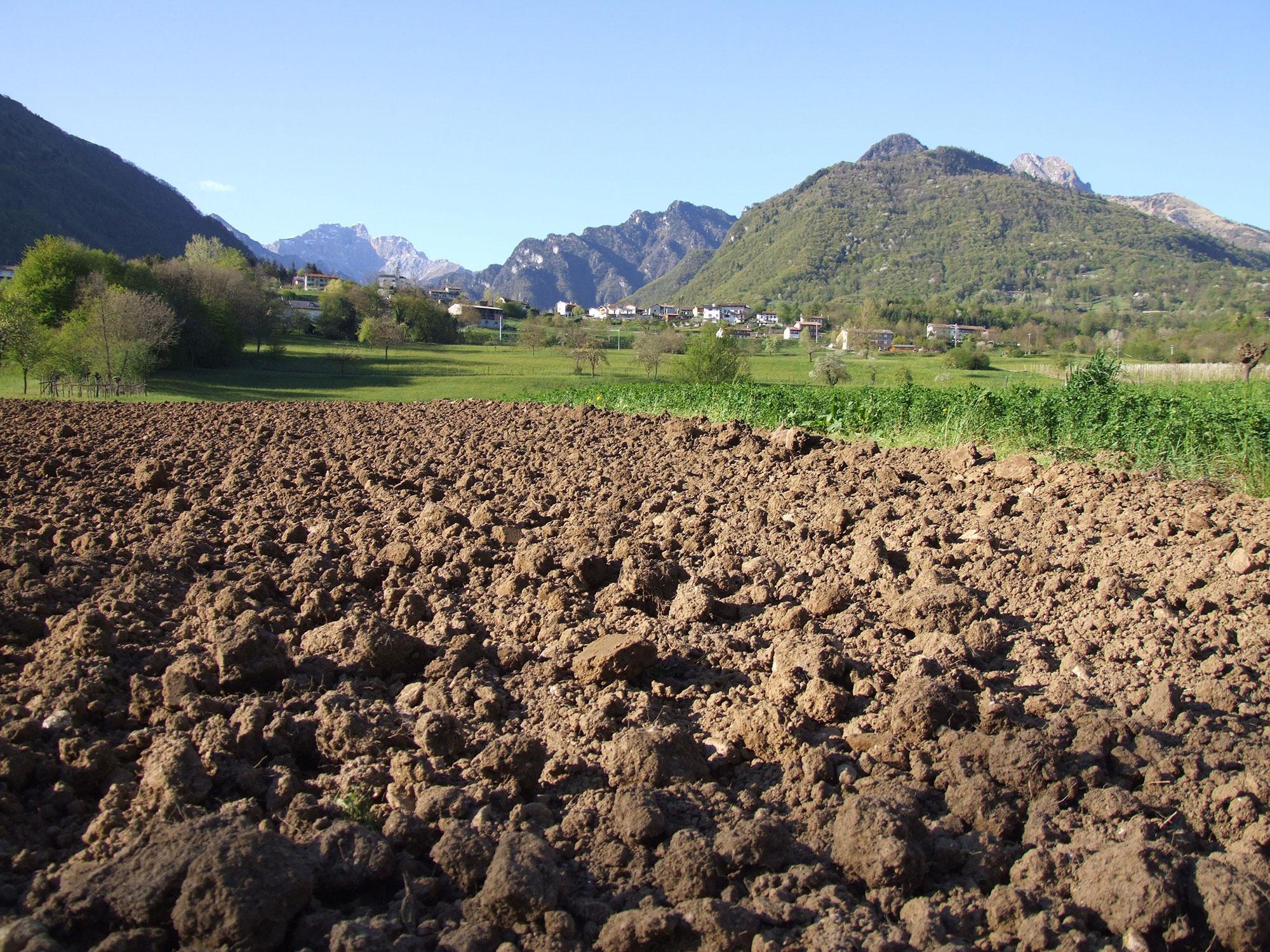 Agrotecnici Belluno